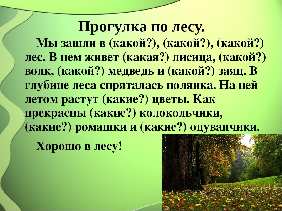 Прогулка по лесу. Мы зашли в (какой?), (какой?), (какой?) лес. В нем живет (к...