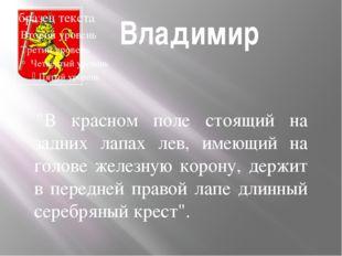 """Владимир """"В красном поле стоящий на задних лапах лев, имеющий на голове жел"""