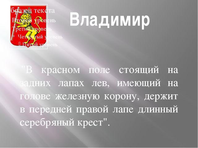 """Владимир """"В красном поле стоящий на задних лапах лев, имеющий на голове жел..."""