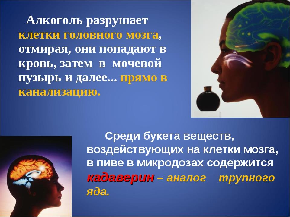Алкоголь разрушает клетки головного мозга, отмирая, они попадают в кровь, за...