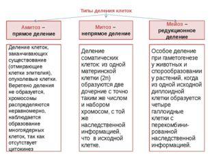 Типы деления клеток Амитоз – прямое деление Митоз – непрямое деление Мейоз –
