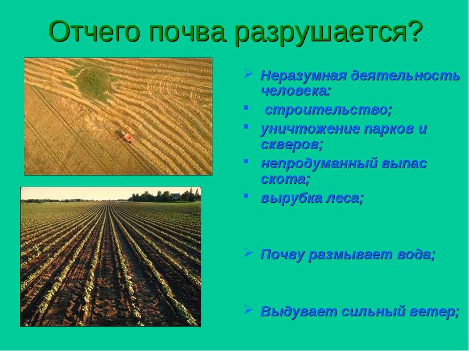 Картинки для презентации о почве