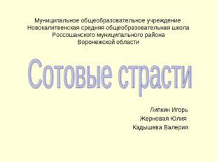 Муниципальное общеобразовательное учреждение Новокалитвенская средняя общеобр