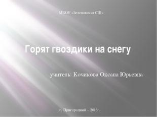 Горят гвоздики на снегу учитель: Кочикова Оксана Юрьевна МБОУ «Зеленовская СШ