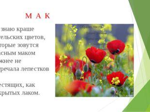 М А К Не знаю краше ангельских цветов, Которые зовутся красным маком Нежнее
