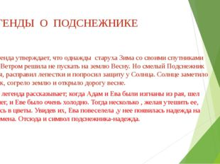 ЛЕГЕНДЫ О ПОДСНЕЖНИКЕ Русская легенда утверждает, что однажды старуха Зима со