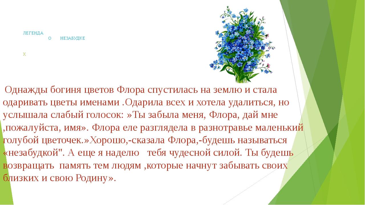 ЛЕГЕНДА О НЕЗАБУДКЕ Х Однажды богиня цветов Флора спустилась на землю и стал...