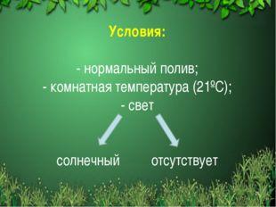 Условия: - нормальный полив; - комнатная температура (21ºС); - свет солнечный