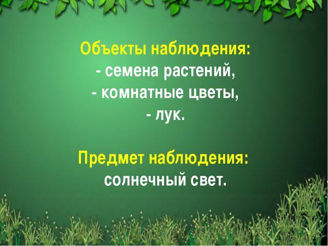 Объекты наблюдения: - семена растений, - комнатные цветы, - лук. Предмет набл...