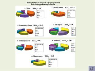 Вклад вредных веществ в формирование высокого уровня загрязнения