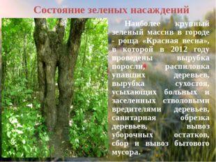 Руководствуясь «Правилами охраны зеленых насаждений на территории города Ново