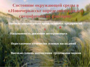 Состояние окружающей среды в г.Новочеркасске определяется рядом специфических