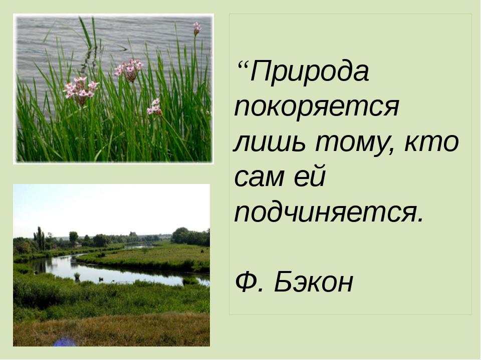 """""""Природа покоряется лишь тому, кто сам ей подчиняется. Ф. Бэкон"""
