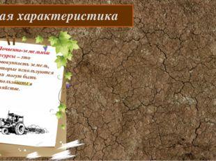 Общая характеристика Почвенно-земельные ресурсы – это совокупность земель, к
