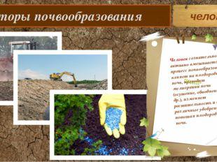 Факторы почвообразования человек Человек сознательно и активно вмешивается в
