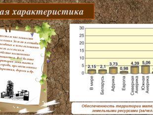 Общая характеристика С ростом численности населения Земли площади пригодных