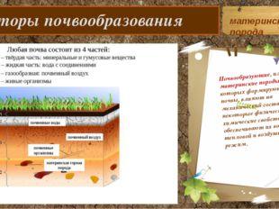 Факторы почвообразования Почвообразующие, или материнские породы, на которых