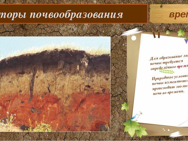 Факторы почвообразования Для образование любой почвы требуется определённое...