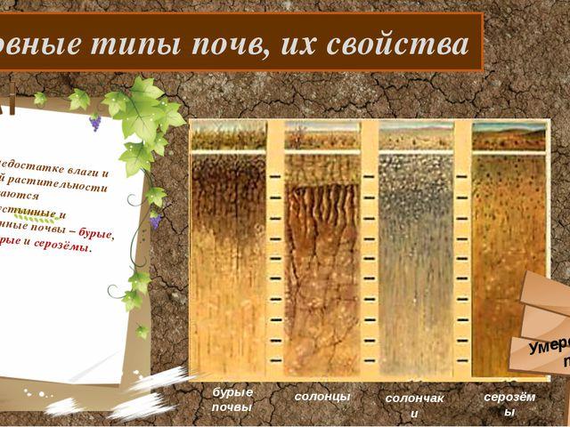 Основные типы почв, их свойства При недостатке влаги и бедной растительности...