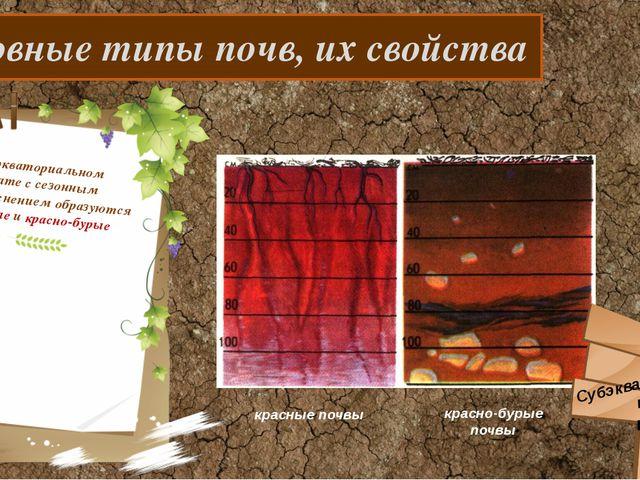 Основные типы почв, их свойства В субэкваториальном климате с сезонным увлаж...