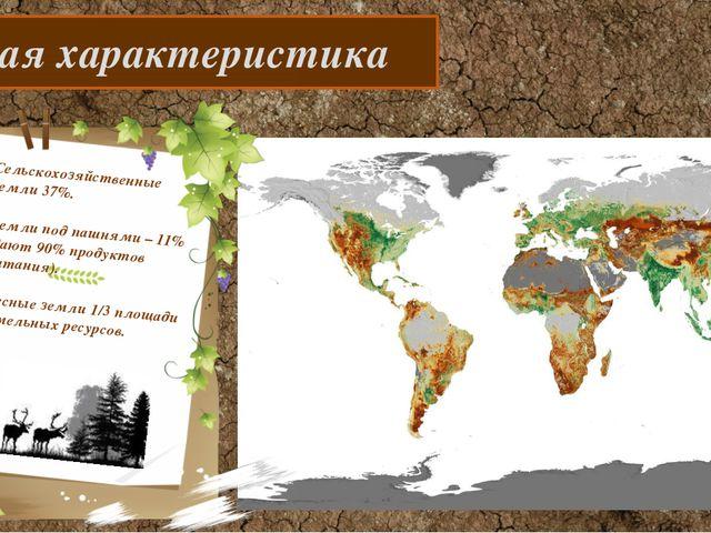 Общая характеристика Сельскохозяйственные земли 37%. Земли под пашнями – 11%...