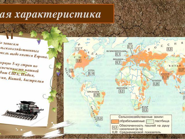 Общая характеристика По запасам сельскохозяйственных земель выделяется Европ...