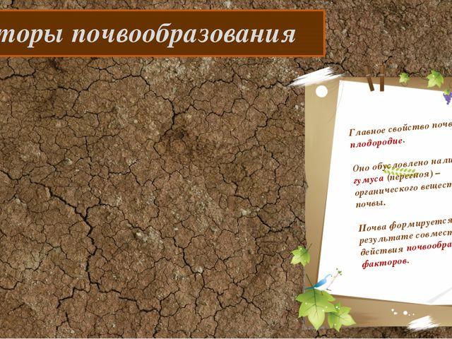 Факторы почвообразования Главное свойство почвы – плодородие. Оно обусловлен...