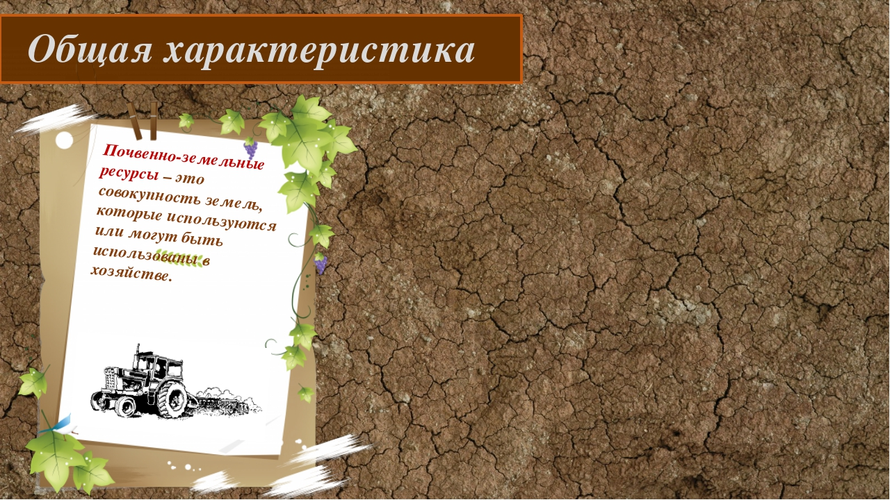 Общая характеристика Почвенно-земельные ресурсы – это совокупность земель, к...
