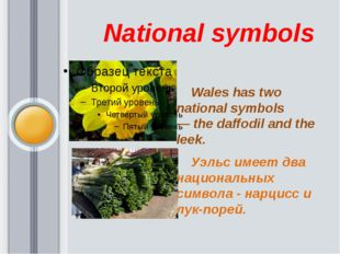 National symbols           Wales has two national symbols —the daffod