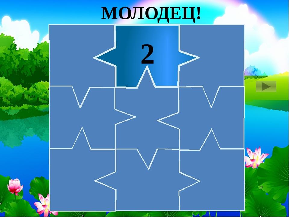 2 МОЛОДЕЦ!