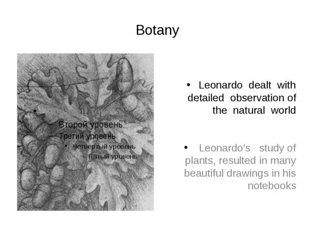 Botany Leonardo dealt with detailed observation of the natural world Leonard...
