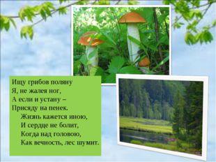 Ищу грибов поляну Я, не жалея ног, А если и устану – Присяду на пенек. Жизнь