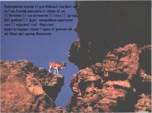 Бауырына алуан түрлі байлықты басқан асқар Алтай ежелден төсінен аңы, төбесін