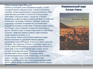 Национальный парк Алтын-Эмель Общая плошадь парка 459620 га. Климат пустынный