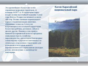 Катон-Карагайский национальный парк Это крупнейшая в Казахстане особо охраняе