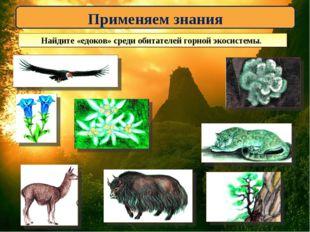 Применяем знания Найдите «едоков» среди обитателей горной экосистемы.