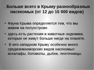 . Больше всего в Крыму разнообразных насекомых (от 12 до 15 000 видов) Фауна