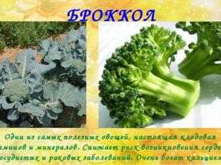БРОККОЛИ Один из самых полезных овощей, настоящая кладовая витаминов и минера