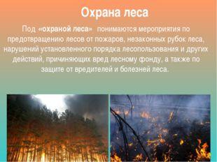Охрана леса Под«охраной леса»понимаются мероприятия по предотвращению лесо
