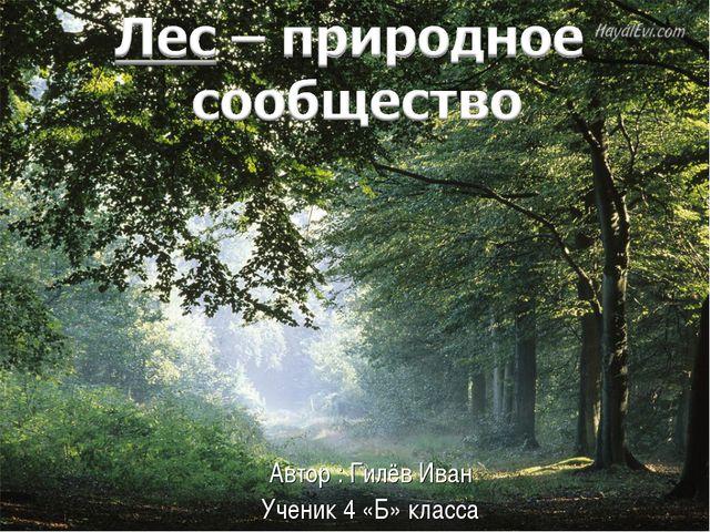 Автор : Гилёв Иван Ученик 4 «Б» класса