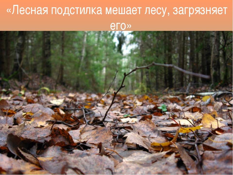 «Лесная подстилка мешает лесу, загрязняет его»