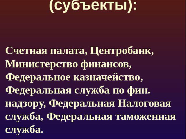 Органы контроля (субъекты): Счетная палата, Центробанк, Министерство финансов...