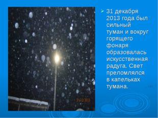 31 декабря 2013 года был сильный туман и вокруг горящего фонаря образовалась