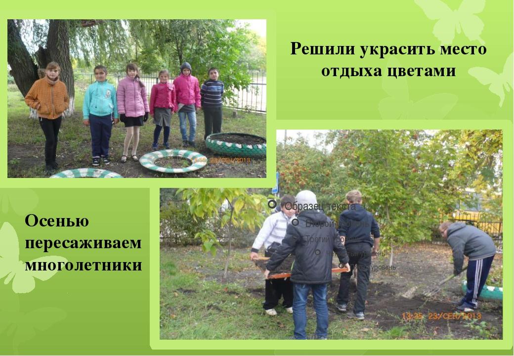 Осенью пересаживаем многолетники Решили украсить место отдыха цветами