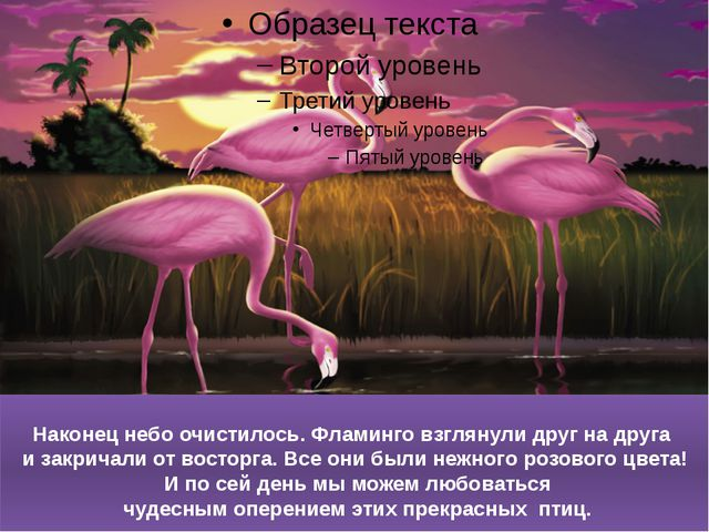 Наконец небо очистилось. Фламинго взглянули друг на друга и закричали от вост...