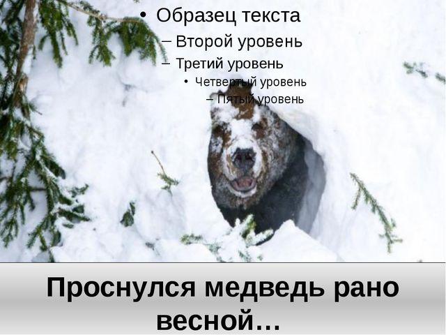 Проснулся медведь рано весной…