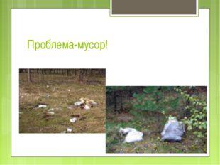 Проблема-мусор!