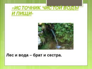 «ИСТОЧНИК ЧИСТОЙ ВОДЫ И ПИЩИ» Лес и вода – брат и сестра.