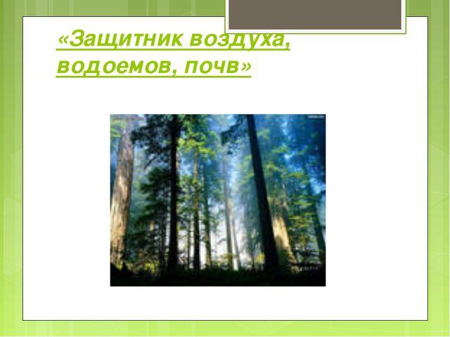 «Защитник воздуха, водоемов, почв»