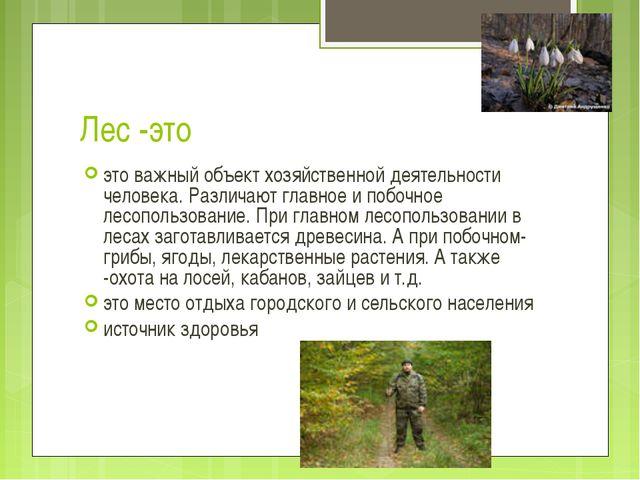 Лес -это это важный объект хозяйственной деятельности человека. Различают гла...